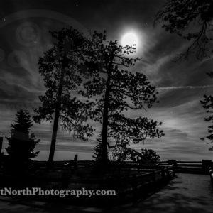Jeff Wier-A NIGHT IN THE PARK