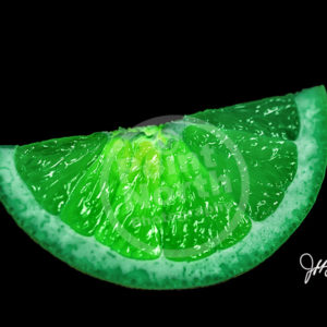 Point North Photography-ELECTRIC LIME