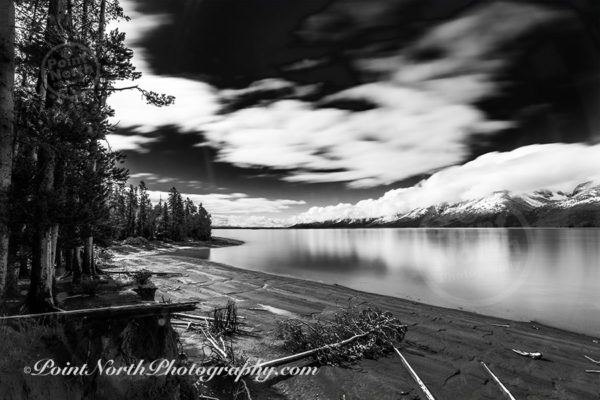 Point North Photography-Jeff Wier-JACKSON LAKE