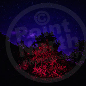 Point North Photography-NIGHT SKY 2