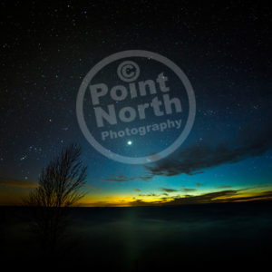Point North Photography-Venus