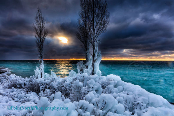 Point North Photography-WINTER BLUES